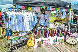 Hippie Fest NC works October 2017 (19 of 167)